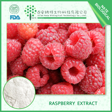 China Manufacture Supply High quality Raspberry Ketone Powder 98% 99% Raspberry Extract