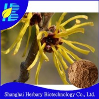 Natural plant extract witch hazel extract for skin care