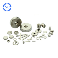 Various Shape Customized Neodymium Magnets For