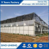 SINOLINKING Agricultural Hydroponic Aeroponics Systems Greenhouse