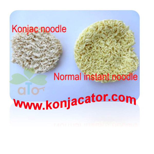 Organic noodles Konjac Pasta Shirataki noodles Private Label Dry konjac noodles China manufactuer