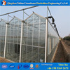 Brand new fiber glass greenhouse covering made in China