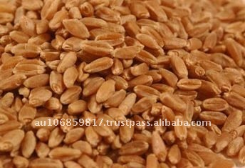 Australian Wheat APH1 Australian Prime Hard wheat APH2 APW1 APW2 Australian Soft wheat ASW1 Durum Wheat AGP Feed wheat