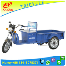 Ce Certificate Export To European Market 500w Electric Tricycle With Cargo Box For Adults
