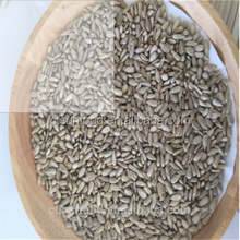 2017 new Sunflower seed kernel with good quality and market price oil sunflower seeds kernel