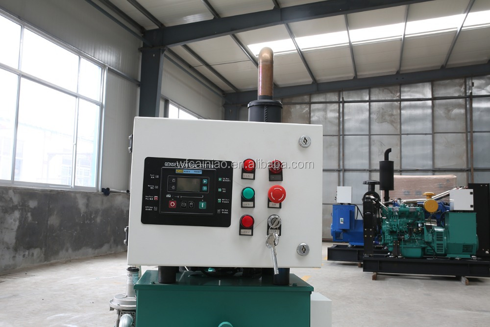 China manufacturer biogas generator with gasifier