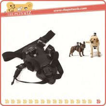 China suppliers pet harness set ,p0wfd chest strap mount for for sale