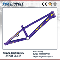 20 Inch Aluminum BMX Frame Bike And Fork