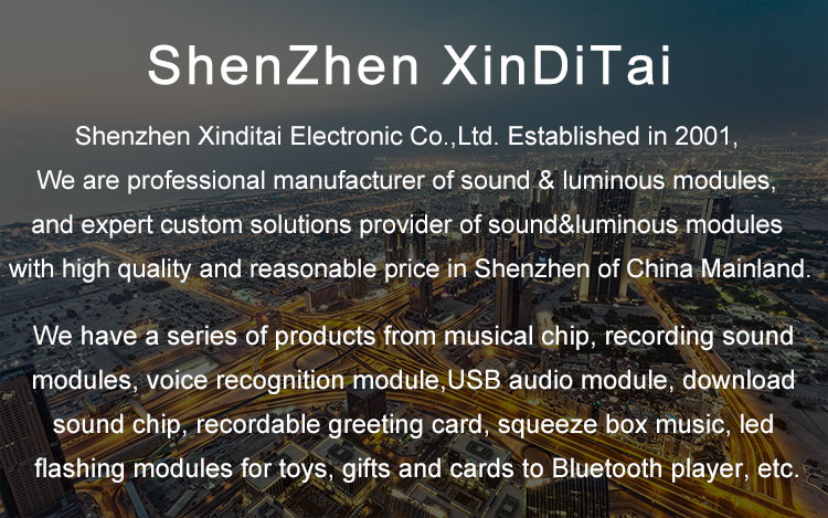 Fast delivery voice chip programmer recordable sound chip for greeting card
