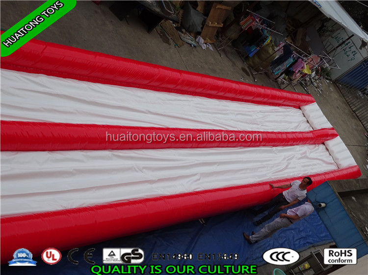 Funny And Popular Giant Inflatable Water Slide For Adult with good quality