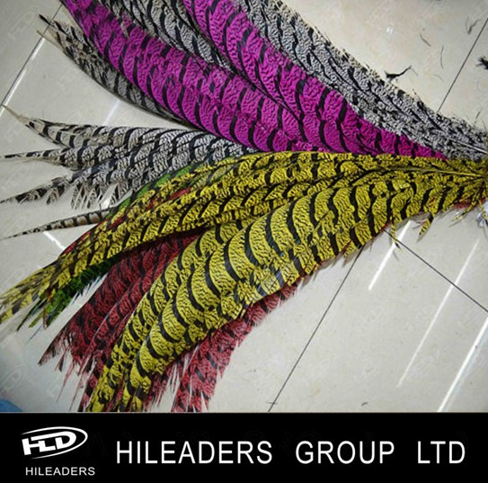 SF666 Wholesale Dyed Carnival Lady Amherst Pheasant Feathers