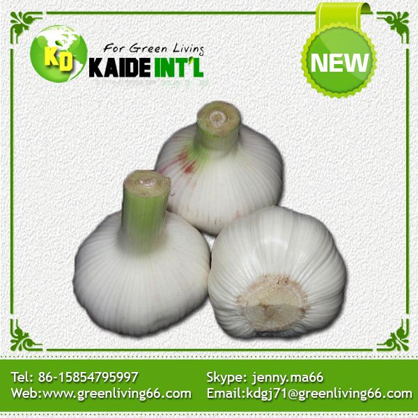 Pass Brc Good-Tasting Fresh Pure Chinese Fresh White Garlic