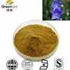High Quality Platycodon Root / Balloon Flower Root Extract With Our Own Factory