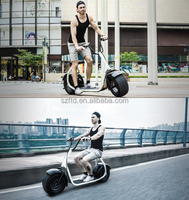 HarleLy electric bike with fat tyres Citycoco harley 2 wheels off road smart city scooter electric motorcycle