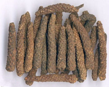 Long Pepper Extract