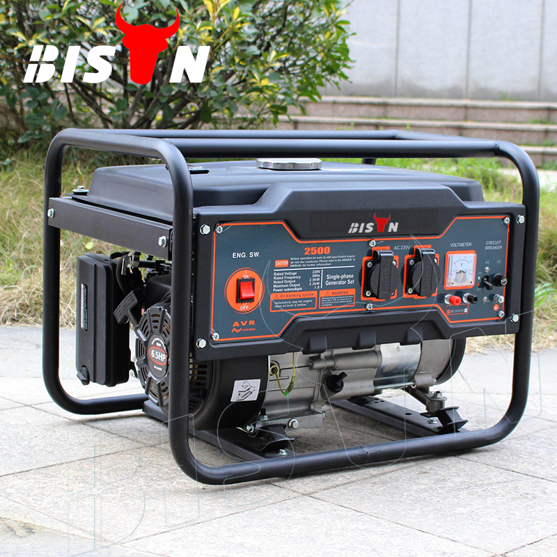 BISON(CHINA) BS2500M 2kw 2kva Copper Wire 6.5hp AC Single Phase Portable Gasoline Spring Powered Generator