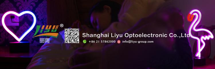 Chinês feito sob encomenda pequeno conduziu a iluminação decorativa carta iluminado