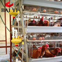 Chicken Poultry Farm Equipment For Sale In Malaysia