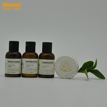 New product Cheap small hotel amenities soap shampoo shower gel
