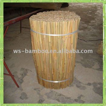 Bamboo cane (2.5' 6/8mm)