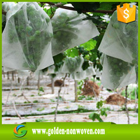 Super-wide PP spunbond agriculture non woven fabric for Green House Wholesale
