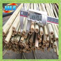 House use little bamboo