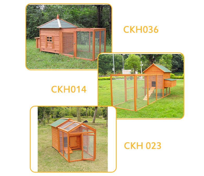 Layer poultry cages for kenya farms