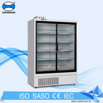 Modern european design vertical 2 glass door freezer
