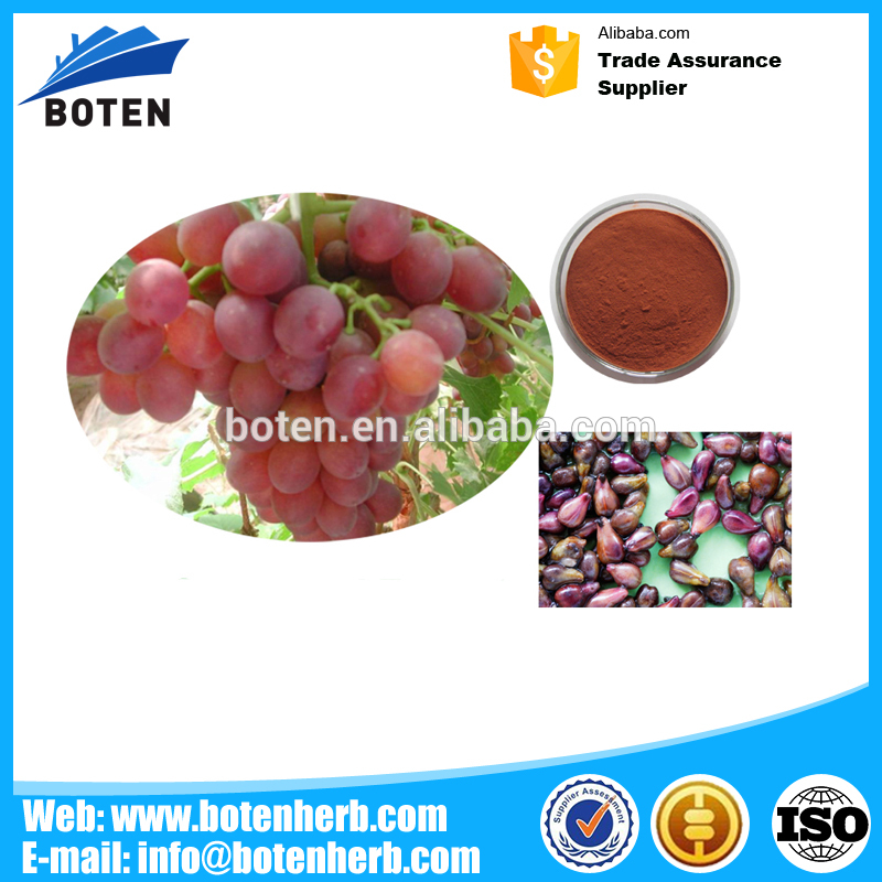 China Supplier Beauty Skin Cosmetic Grape Seed extract powder for soft capsule China Factory