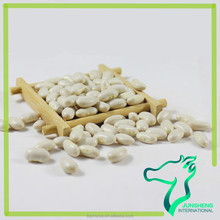 Wholesale Many Kinds of Chinese White Beans Medium Size