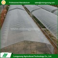 Tunnel Plastic Covering agriculture green house