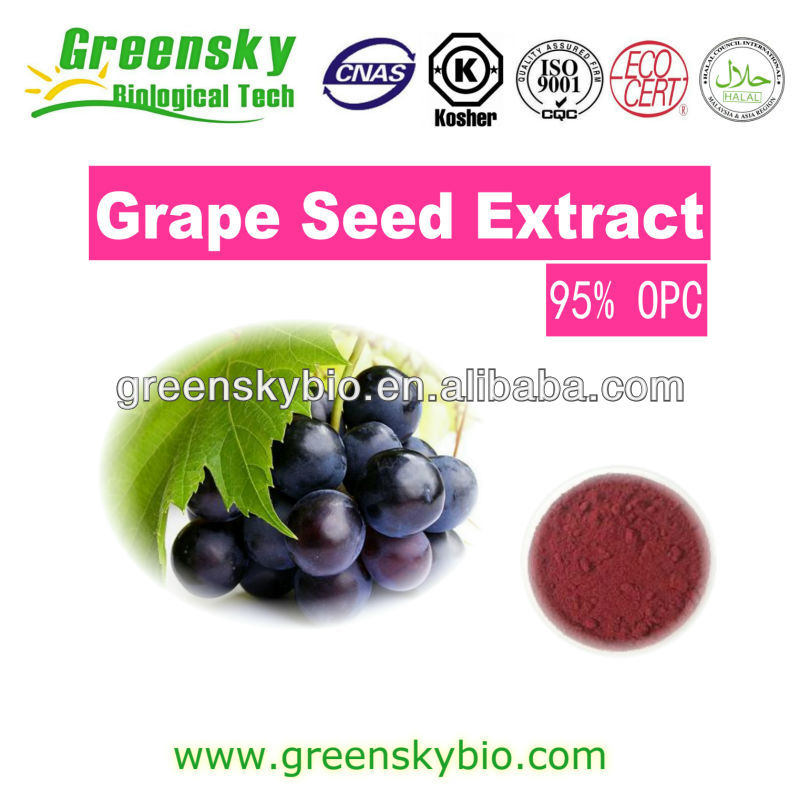 Organic Grape Seed Extract,Natural Grape Seed Extract Powder,Grape Seed Extract Proanthocyanidin Grape Seed Extract Powder