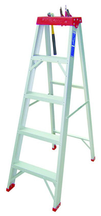 Everlas Certified Step Ladder