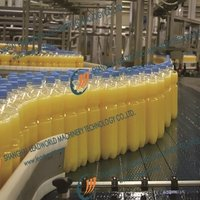 Beverage Juice Water Canned Chain Conveyor