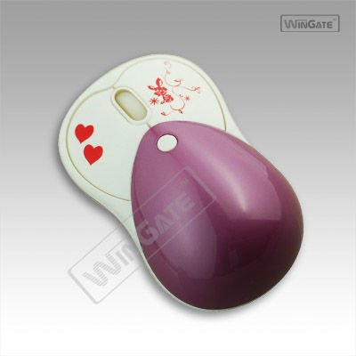 INNOVATIONS MINI USB OPTICAL MOUSE 800 DPT PC/MAC SMALL COMPACT DESIGN
