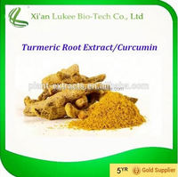 Manufacturer Supply Turmeric Powder / Turmeric Finger/Turmeric Root Extract