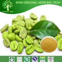 100% Pure Natural Green Coffee Bean Extract