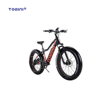 Manufacturer best price top quality strong city electric delivery bike