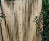 high quality natural drilled bamboo fence