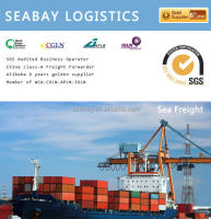 Professional international from china to usa container shipping