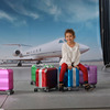 4 Wheels Aluminum Spinner Luggage Trolley