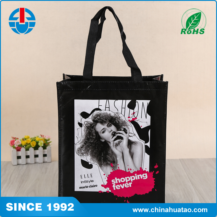 Fugang New Design Foldable Fashion ELLE Pretty Girl Logo Non Woven Lamination Shopping Bag