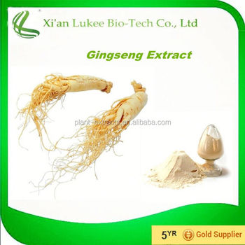 Chinese Herb Extract Panax Red Ginseng Extract for Drink