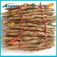 natural product plant extract powder wild yam benefits