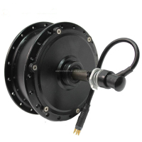 Electric Car Wheel Motor