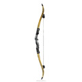 Junxing New Archery Recurve Bow for Hunting With ILF Limbs