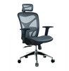 Modern ergonomic exective desk office chairs with Aeron back office chair