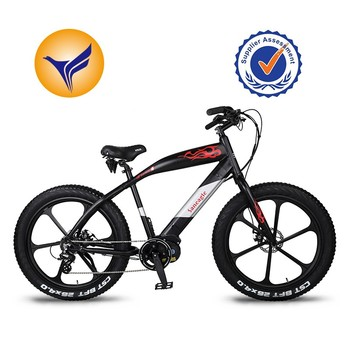 36v250w electric fat bike