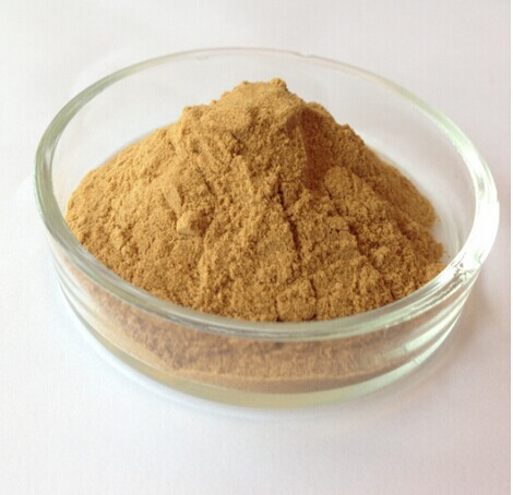 Natural Sexual Herbs Only for Men Damiana Leaf Extarct Powder
