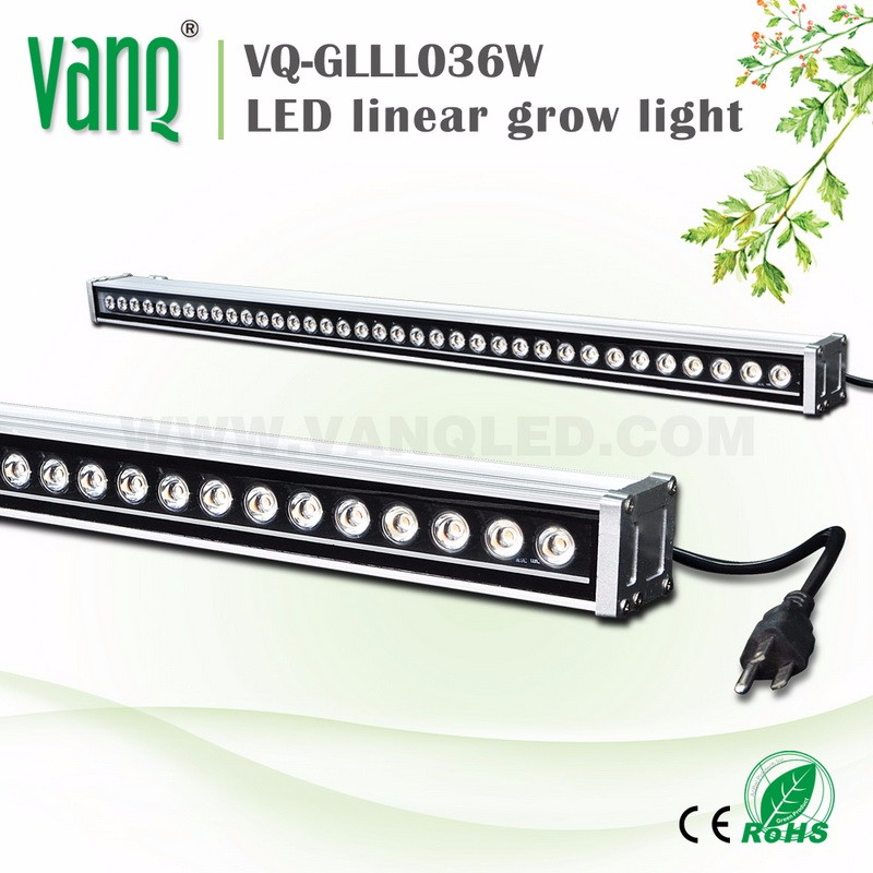 "VQ-GLLL054W ""led grow light"" For Greenhouse/Horticulture/Indoor House 54W LED Plant Lamp"